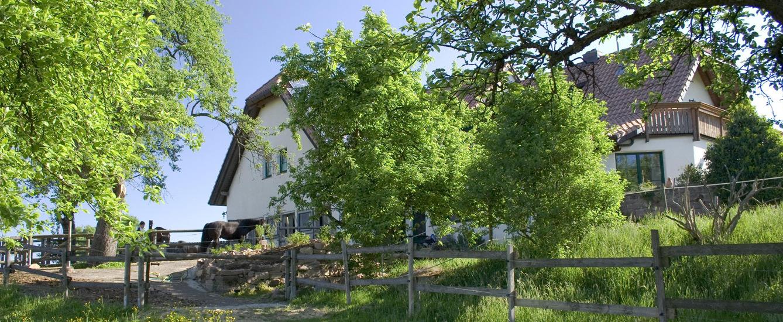 Freiamt im Schwarzwald